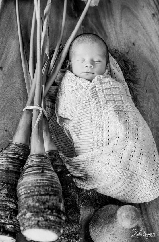 Kauai Newborn Photographer (1 of 1)-7