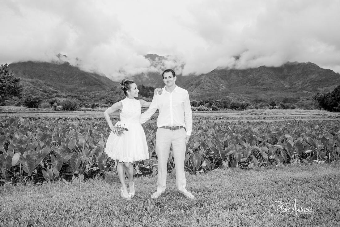Kauai Wedding Photographer (1 of 1)-20